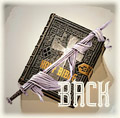 Bible-Sword-Back